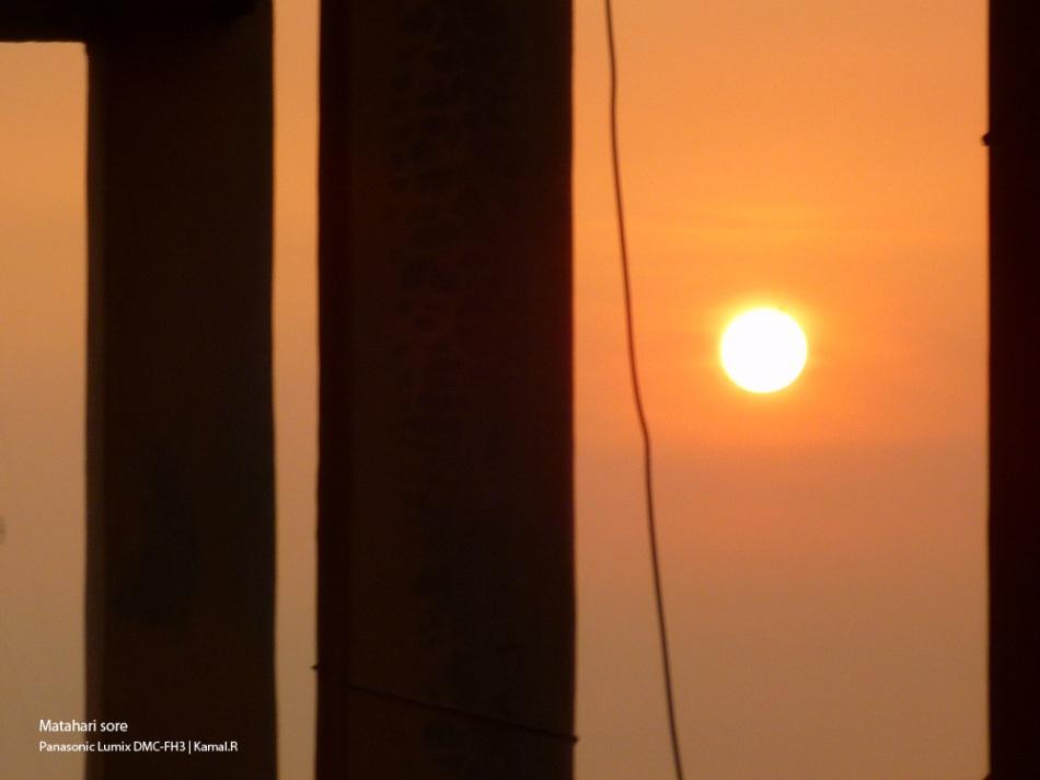 matahari sore